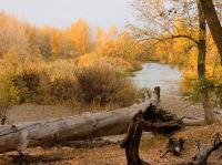 Авторские работы фотохудожника Сергея Кузьмина