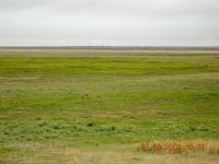 Село Крыловка