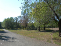 Сад Малишевского
