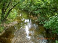 Река Елшанка. Август 2005 года